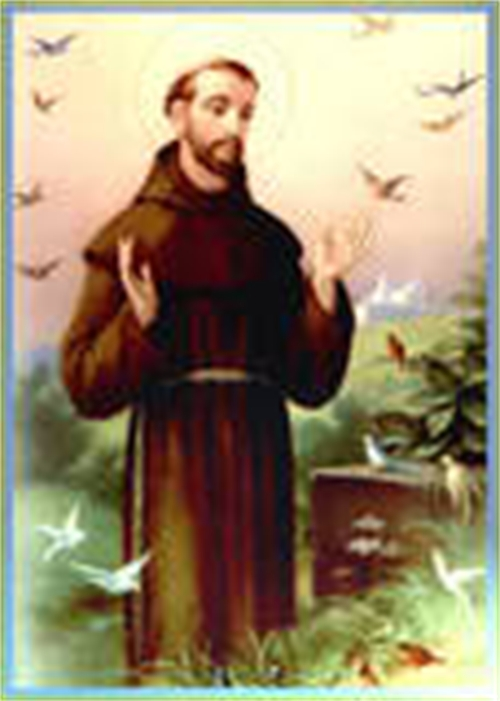 Faith In Action Contest - St. Francis of Assisi